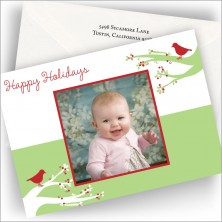 Snow Birds Holiday Photo Cards